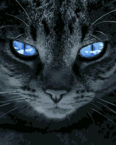 Картина по номерам 40x50 Отражение неба в голубых глазах кота